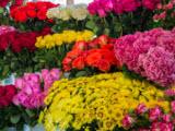 Цветочный магазин, оптово-розничный центр
