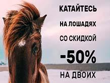 Катайтесь на лошадях со скидкой!