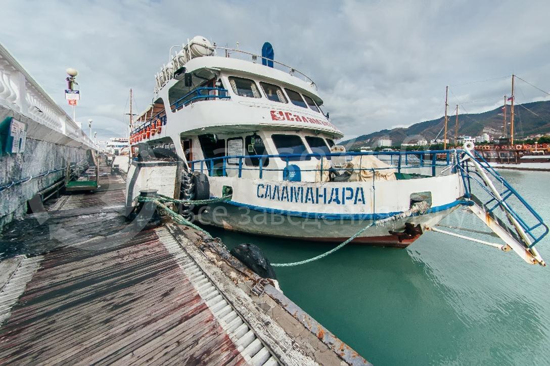 Саламандра, лайнер морские прогулки геленджик 01