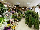 Флора-дизайн, флористическая мастерская