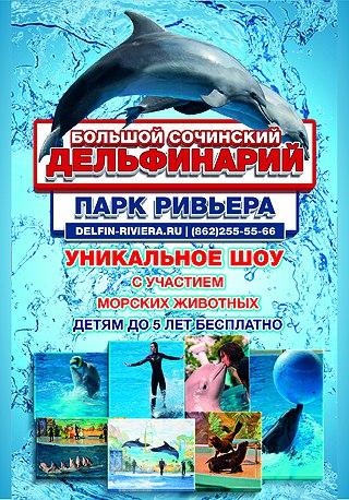 """Шоу дельфинов, белых китов гигантов, морской львицы и моржихи"""""""