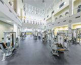 Gold Fit & SPA, фитнес-клуб